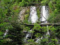 Cascades dans les Vosges...