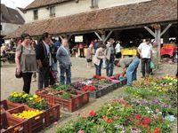 233.Le marché campagnard de Marigny en Orxois , derriére la Ferté-Milon.