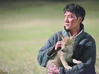 Ciné-cure.....''Le dernier loup'', longtemps  après ''La victoire en chantant''