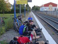Petite cueillette de poires dans un verger ravissent certains palais avant d'attendre le train qui nous ramènera chez nous !