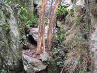 ma balade s'arrête à la vue de Ana Chata, le dernier et petit pic. La météo change vite, tout à coup c'est la brume. Je rebrousse chemin et longe à nouveau les grands rochers, vers l'est cette fois.