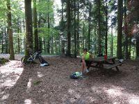 déjeuner sous les arbres quelque part au pied de l'Ungersberg. Les plus jeunes ont du mal à se faire à la sieste ...
