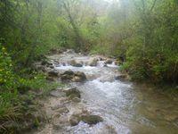 La petite rivière