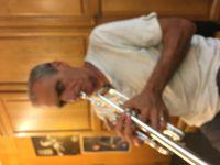 Les musiciens professionnels sont nombreux à avoir adopté l'Harmonisation