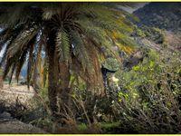 La vallée du &quot&#x3B; Paradis &quot&#x3B;