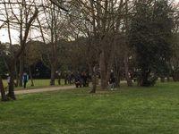 Ciel gris au dehors mais pas assez pour décourager nos jeux dans l'herbe du centre de loisirs chrétien l'Etoile !