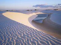 Beauté du desert