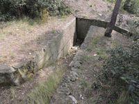 Les chemins d'accès aux blockhaus ou leurs traces dans la végétation