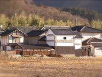 Les touffes d'arbres verts sont des bambous (Také 竹). Ils sont légion dans les campagnes. Le Japonais se demandent d'ailleurs ce que nous, Occidentaux, leur trouvons de si particulier...