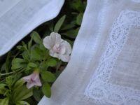 Lin blanc &amp&#x3B; lavande