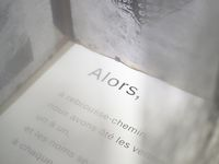 """Quelques Photographies (détails) du livre d'artistes/installation """"Territoires"""", estampes, vidéo, texte... Et transparences... Une oeuvre collective signée Danielle Berthet, Isaure de Larminat et Jean-Marc Paubel, sur un texte de Dominique Sorrente"""