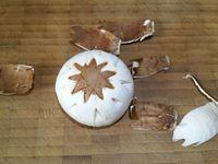 1 - Nettoyer et essuyer délicatement les champignons. Oter les pieds. Réaliser les empreintes avec le couteau sur les têtes des champignons blancs et roses comme expliqué sur la vidéo. Retirer à certains endroits la peau des champignons roses pour créer des contrastes de couleurs. Utiliser vos champignons pour décorer vos plats.