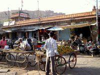 JODHPUR (Rajasthan)