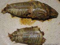 ATIPA à TËTE PLATE cuisiné en court bouillon, avec sa carapace qui ressemble à de la kératine,