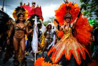 � Archive photos du carnaval de la Martinique by David Gagner-Albert