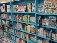 Quelques autres photos pour résumer : des figurines, des vêtements pour le cosplay, des DVDs et jeux (grosse majorité de jeux de drague sur la troisième photo, à voir les couvertures, d'ailleurs...), tout ça, tout ça...
