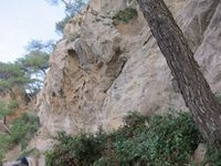 Boucle : Port de la madrague - domaine de la martelle - dune de sable - chemin des vignes - calanque de port d'alon - chemin du littoral -pointe Fauconnière -pointe du grenier - Port de la madrague