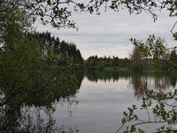 l'étang de la Crégut