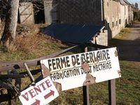 Champsiaux (3 vues) - Berlaire -
