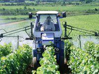 2015-03 Les pesticides