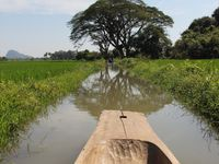 Bilan de 4 semaines au Myanmar