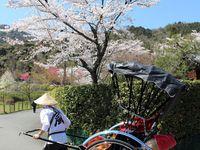 Kyoto, le centre culturel du Japon – 1ère partie