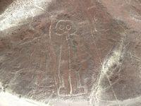 Des lignes à Nazca et du surf à Huacachina