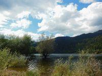 Le lac de Kruth (Wildenstein) - 68