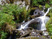 Le ruisseau sous la cascade, un réel plaisir pour les yeux et mon objectif.....