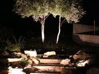 Bassin de nuit -Test des éclairages