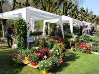 La 18ème Fête des Plantes à Courtanvaux se tiendra les 16 et 17 avril