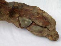 """""""ishigami"""" (stone enclosed in wood) (von Holz eingeschlossenen Steinen)"""