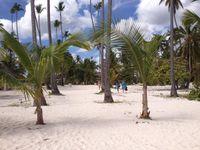 Hotel  IFA VILLAS BAVARO RESORT & SPA Punta Cana