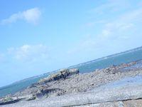 Chapitre 11 : Délicieuse Bretagne