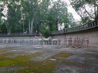 Chandigarh : le monument de la main ouverte et la Haute Cour (le Corbusier), le jardin de rochers de Nek Chand