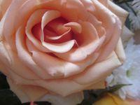 Un bouquet d'avant-anniversaire ...