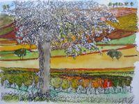 Petites maisons de vigne, Paysages de vigne avec arbre, Vallée de la Loire, Dessins France Poulain