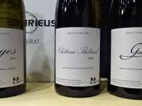 Salon-des-Vins-de-Loire-2016-J-Huchet-Pays-nantais-J-Mourat-Les Bêtes-Curieuses-Cl. Elisabeth-Poulain-Ph.Pont Caffino-wikipedia