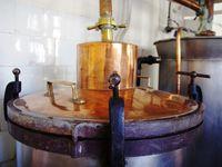 Les alambics de cuivre de la distillerie