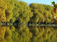 Paysages d'automne en région parisienne