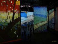 Cet été à La Vilette , avec la ville en carton, en aimant Van Gogh et la Philharmonie