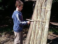 Atelier Construction: préparation du bois, élévation des poutres, fixation et tressage de branches de noistier, consolidation et finalisation de l'ouvrage  avec du torchis.
