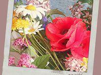 bouquet champêtre sur la table,