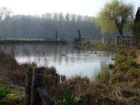 Concours départemental 2012 Les mares et les étangs