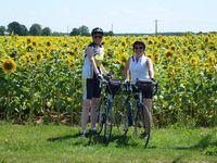 Concours régional 2015 Cyclotouristes parmi les fleurs