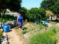 Jardinades des Néréïdes Bosquet samedi 6 juin 2015