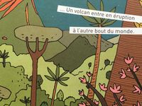 Le monde en une seconde d'Isabel Minnós Martins (textes) et Bernardo Carvalho (illustrations)