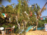 Dans le sable, on voit des branches d'arbre décorées pour les touristes, ça fait drôle, sous 30 °, de vivre ces moments-là.