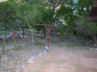 On était bien sur ce camp! On avait même bambi pour nous tenir compagnie en plus des nombreux écureuils!!!