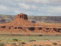 Habitations traditionnelles des Navajos